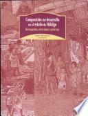 Composición del desarrollo en el estado de Hidalgo