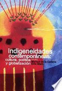 Indigeneidades contemporáneas: cultura, política y globalización