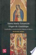 Santa María Tonantzin, Virgen de Guadalupe